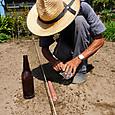 ビール瓶の底をあて大根の種を点播き