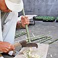 竹標示棒の先を鉈を使い尖らす
